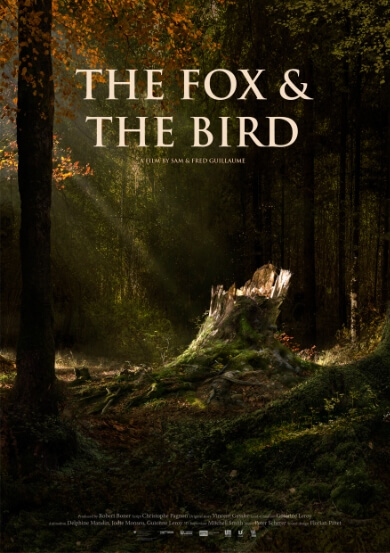 THE FOX & THE BIRD